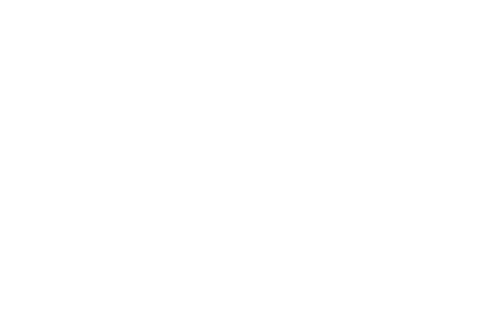 Alle by Brilliant Distinctions Logo